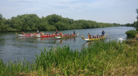 Cubs win Dragon Boating Event