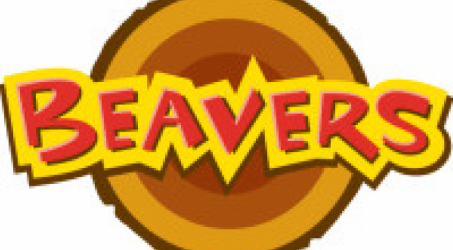 Beavers Leaders – URGENTLY Required