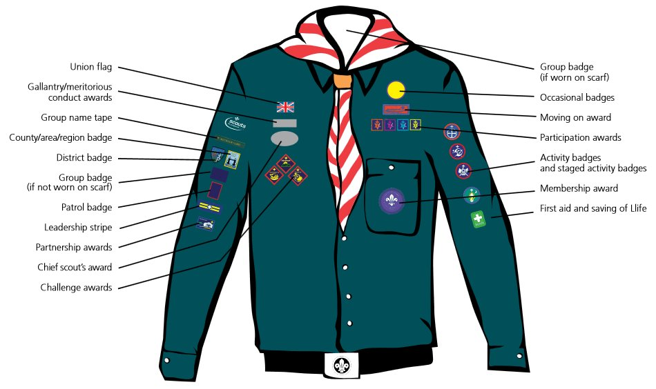 scout badges new